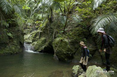 念願の小滝に到着!滝壺の水深は2m以上。