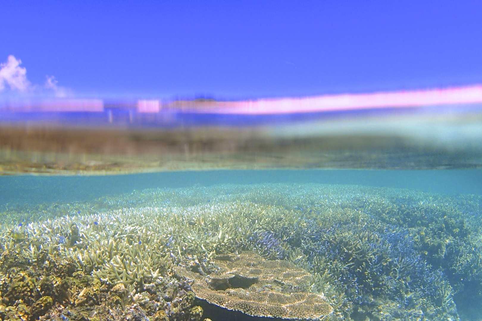 沖縄のパナリ島・下地島の写真ギャラリー
