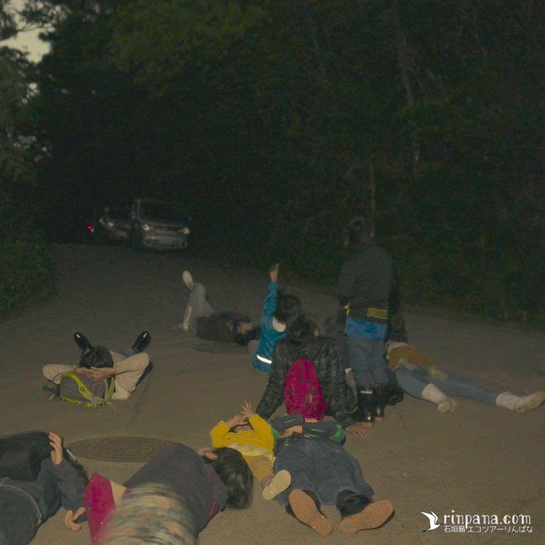 道路に寝転んで星空を眺める