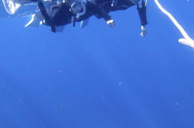マンタの上を泳ぐシュノーケラー