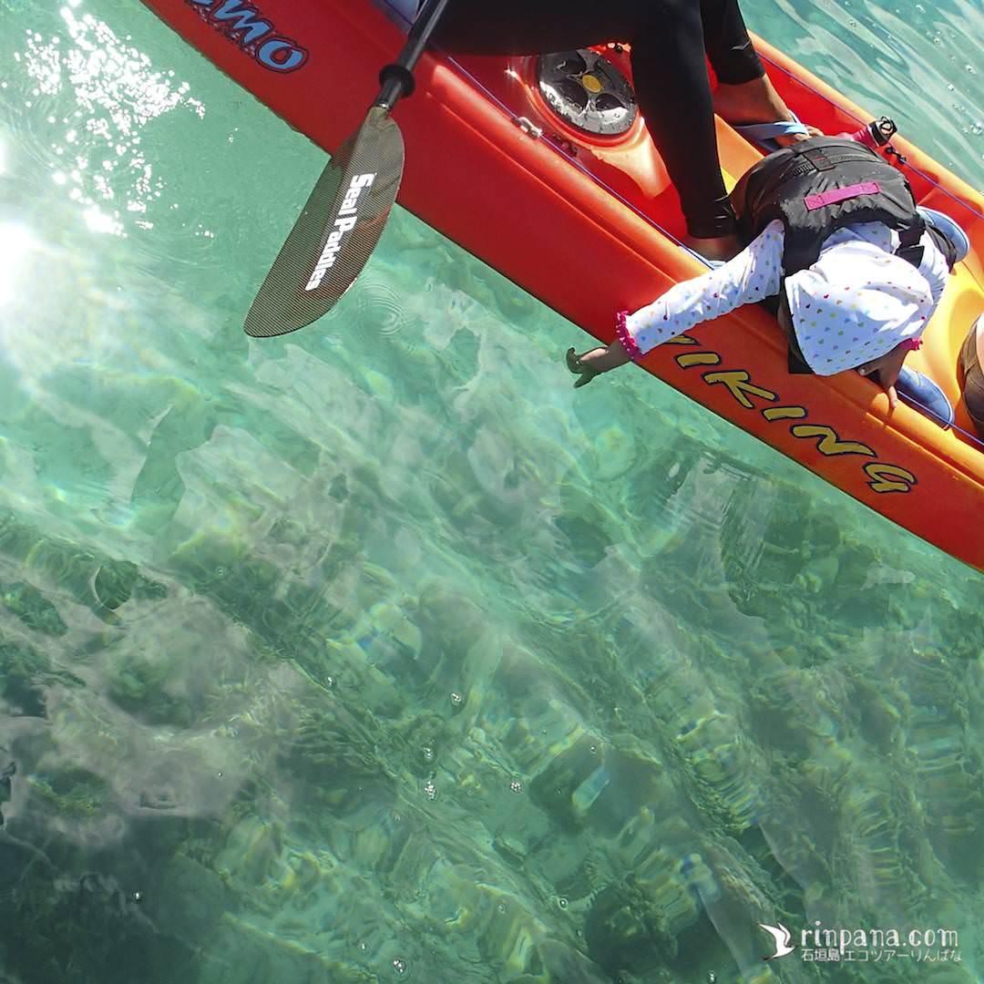 カヌーから海底のサンゴを見る写真