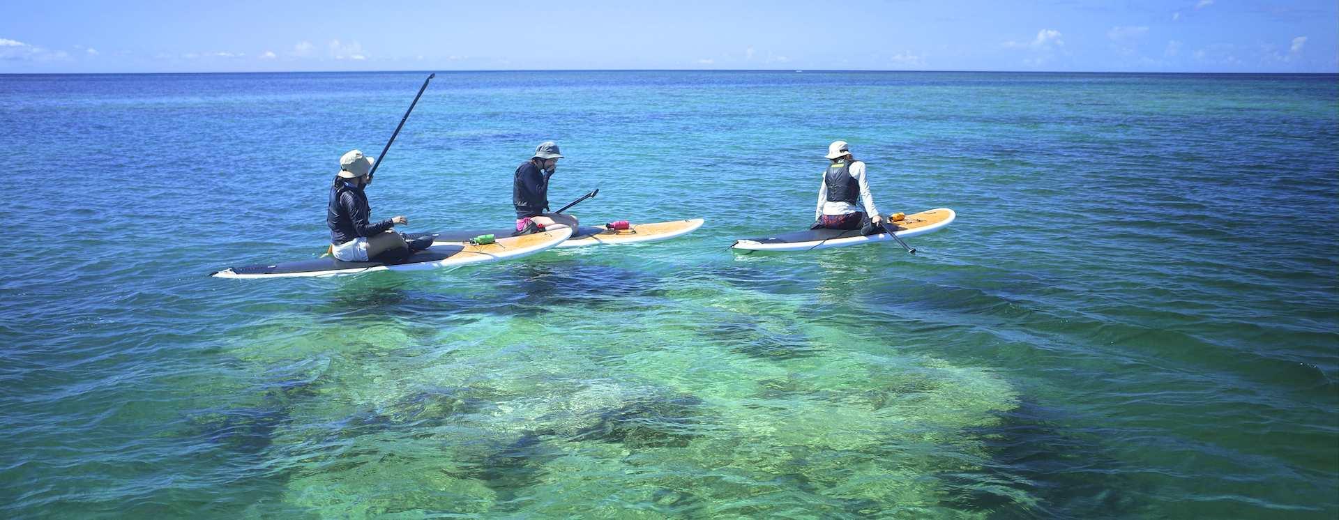 700歳の巨大サンゴの上でSUPを漕ぐ
