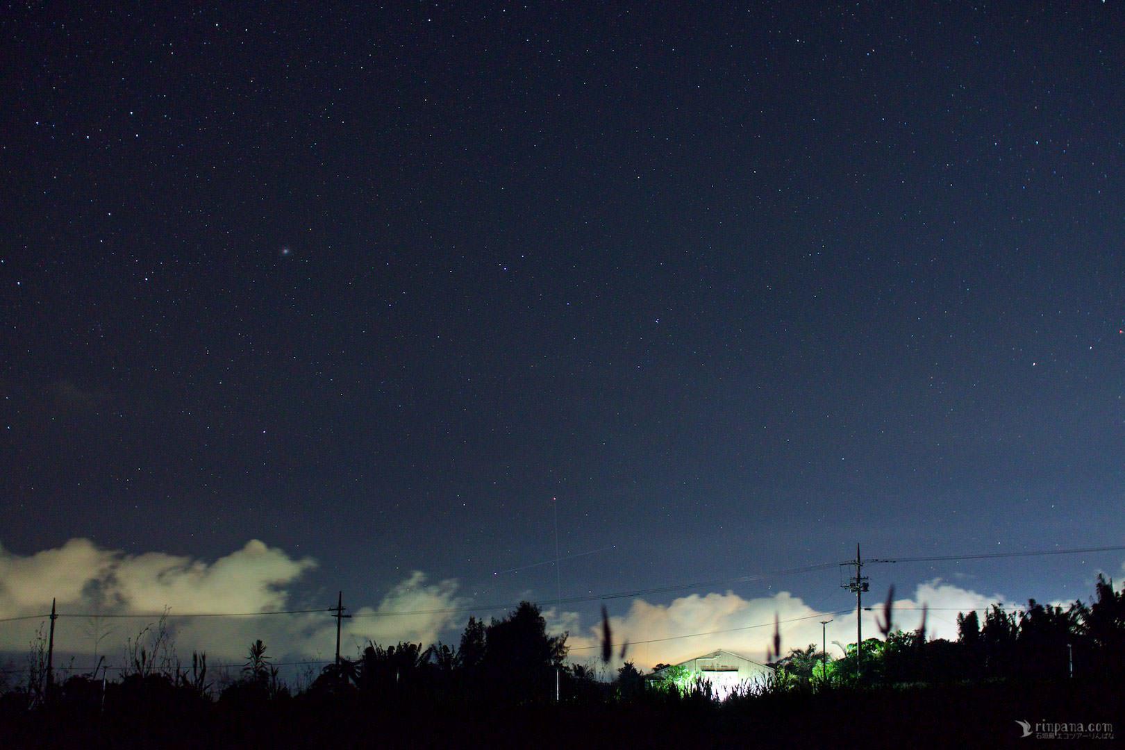 ヤエヤマヒメボタルと南十字星を見る