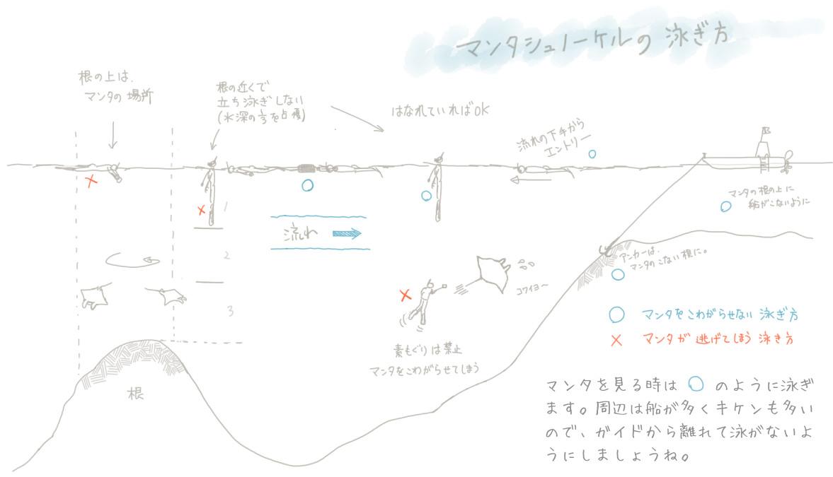 マンタスポットのシュノーケルの泳ぎ方