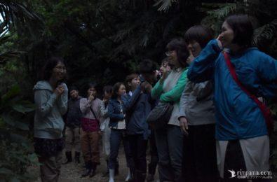 ネイチャーゲームを体験する参加者