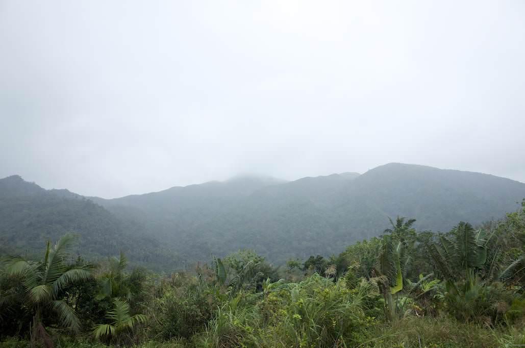 [4K映像有] 雨の季節な石垣島