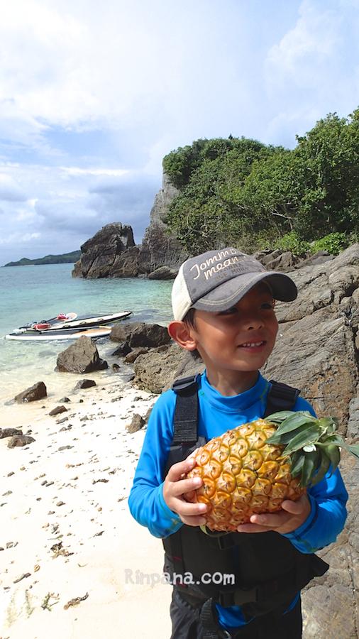 野生のパイナップルを見つけた!? SUPツアー