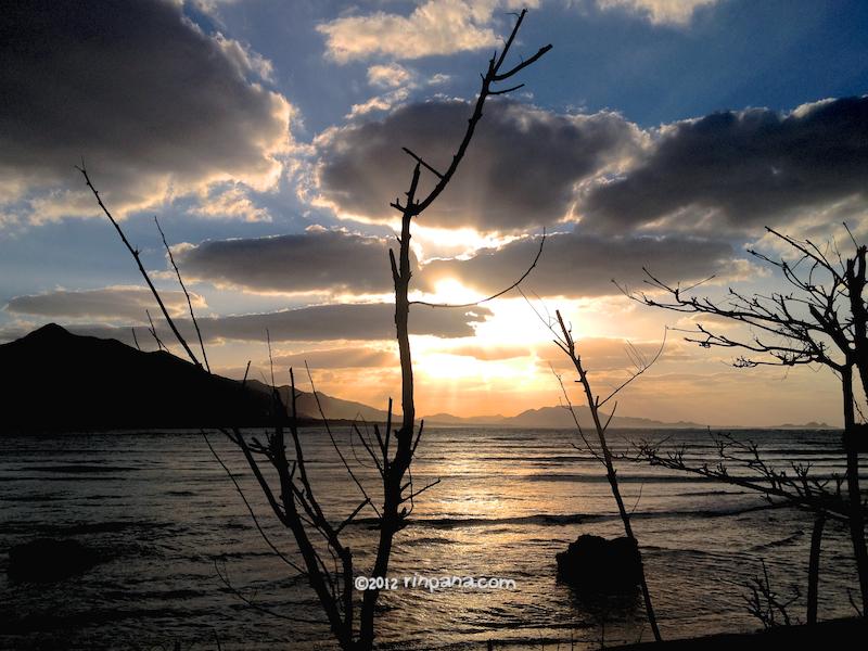 石垣島の山