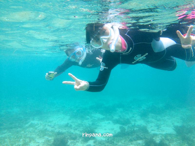 マンタは残念!ビーチでサンゴ礁を見るシュノーケルへ!