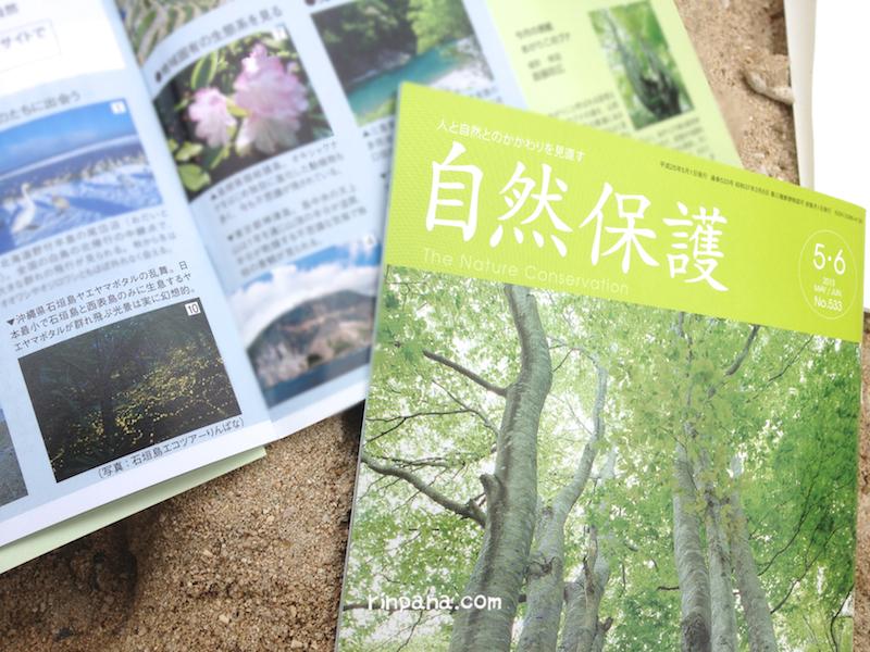 日本自然保護協会の会報誌にヤエヤマボタルの写真が載りました.