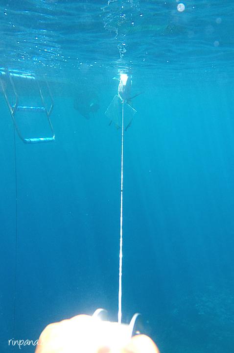 楽しいミーティング(サンゴ礁、水平透明度調査)