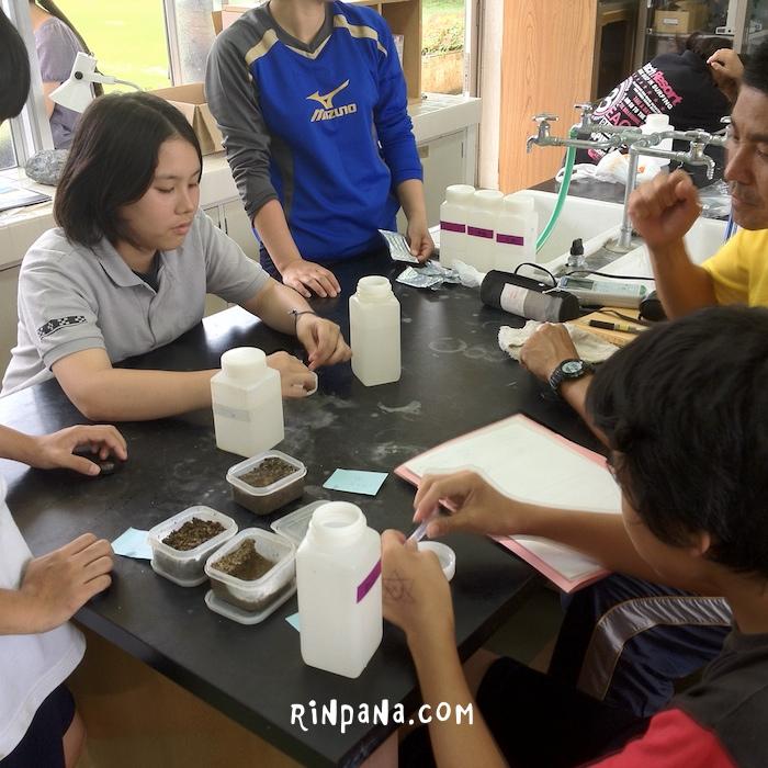 中学生の水質調査