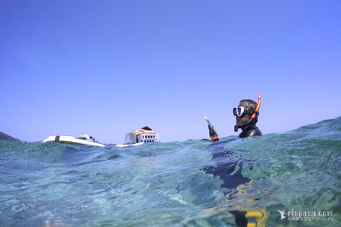 米原ビーチのサンゴ礁の調査