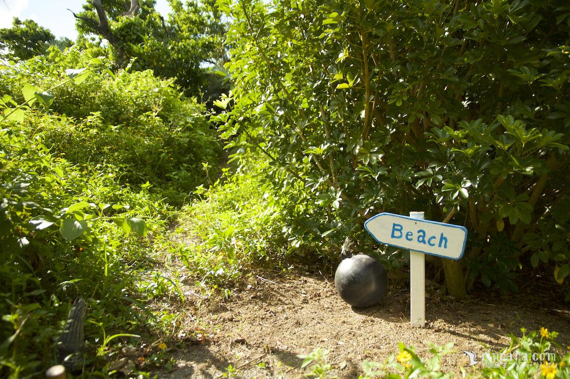 海への道。本当のプライベートビーチへ。