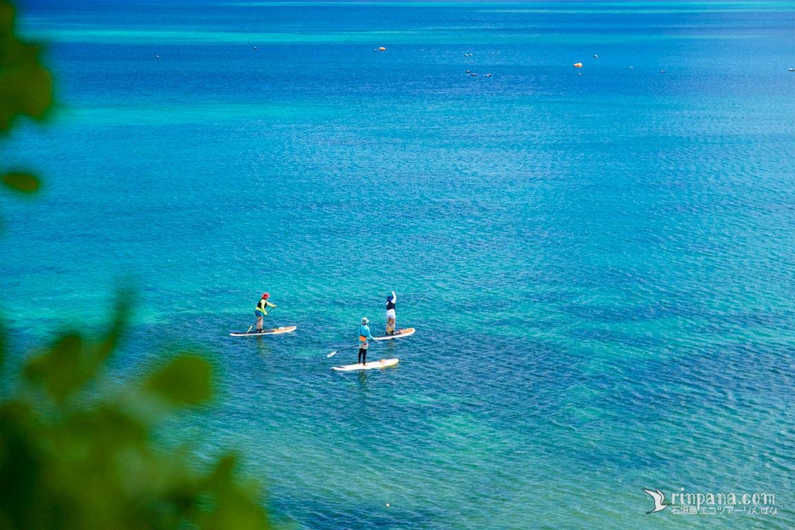 サンゴ礁を泳いで「自然って凄い!」と感じたSUPツアー