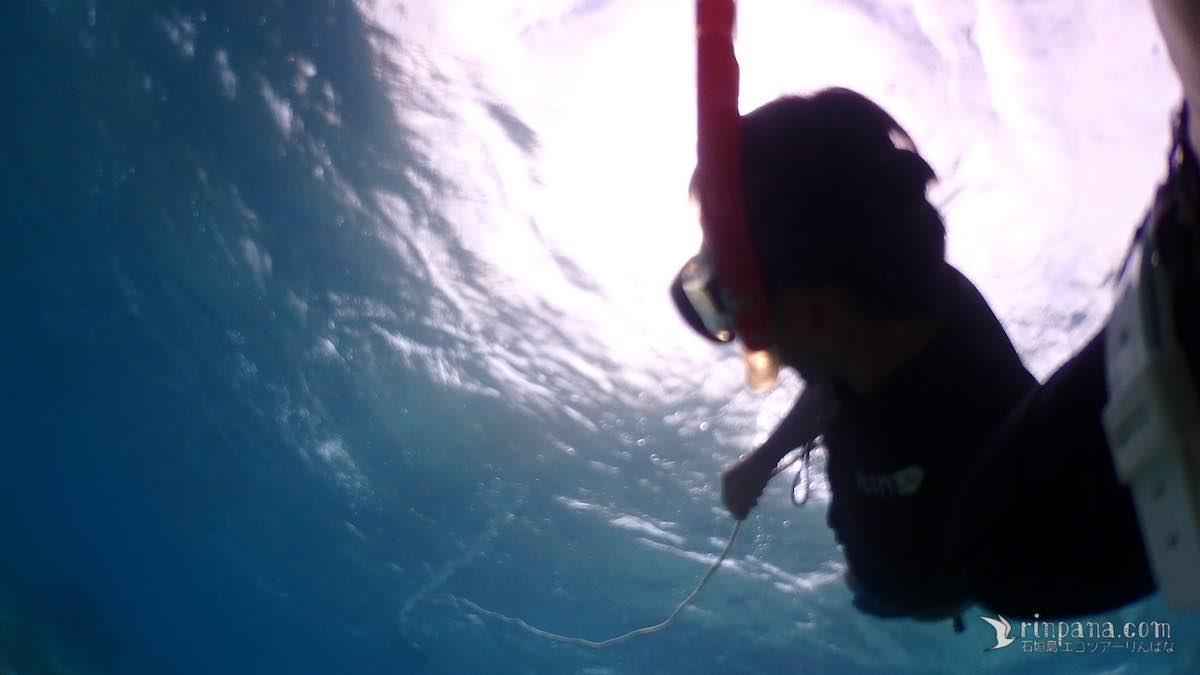今日はサンゴ礁の調査へ。波にもまれた3時間(前編)