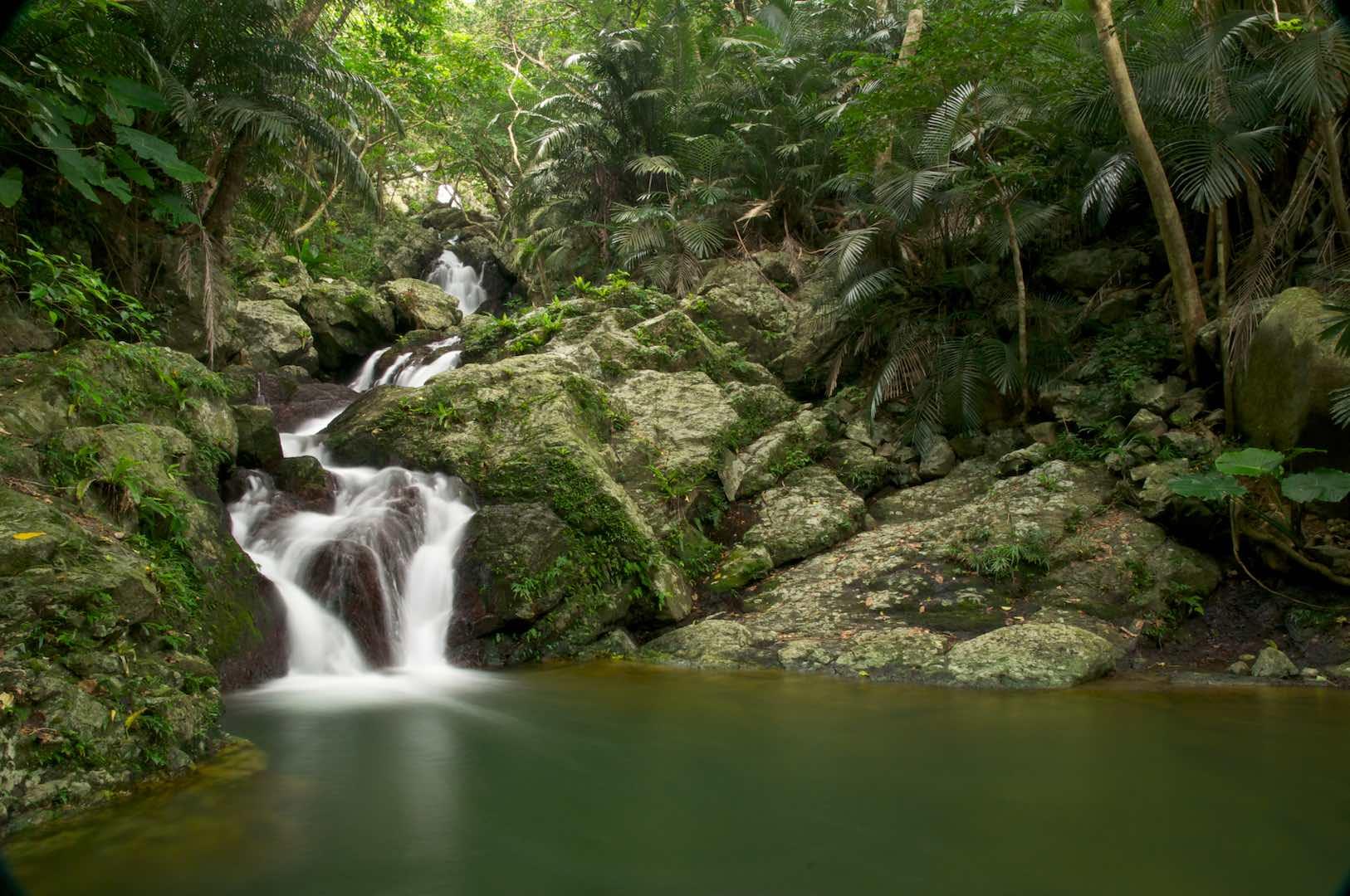 水源地でもある美しい渓流