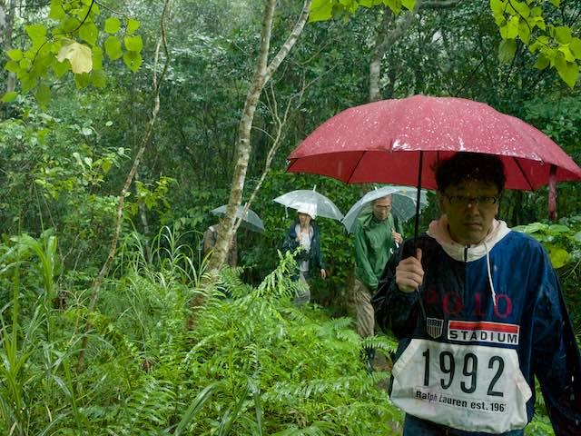 雨の中傘を差してトレッキングする参加者
