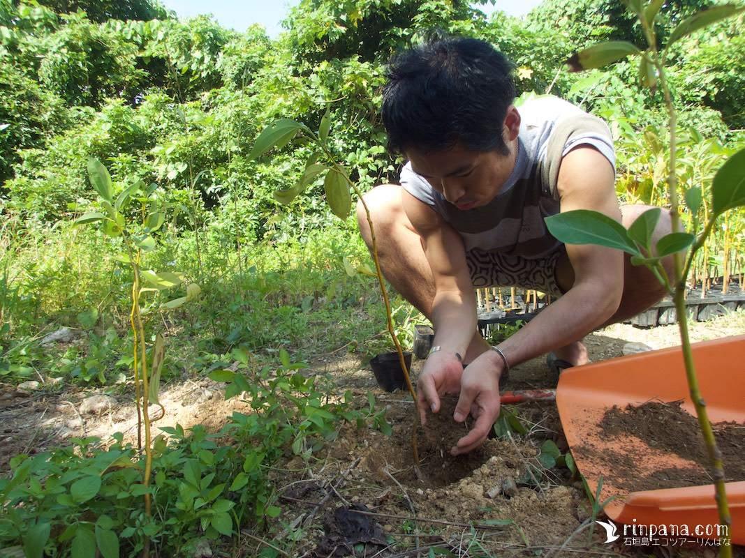[うるまの森再生プロジェクト]いよいよ植樹スタート!