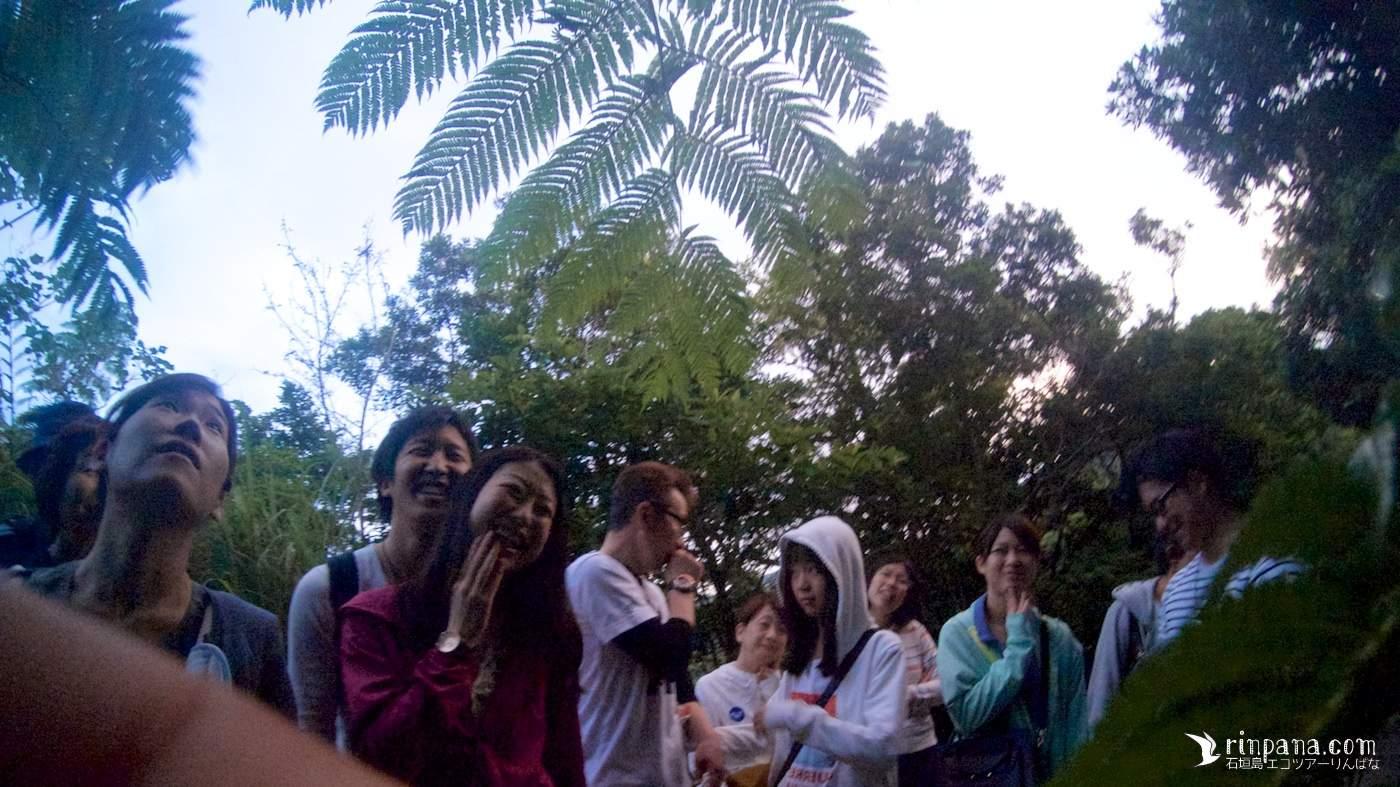 石垣島でナイトツアーに参加する人達