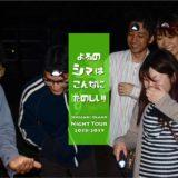 石垣島のナイトツアーの写真