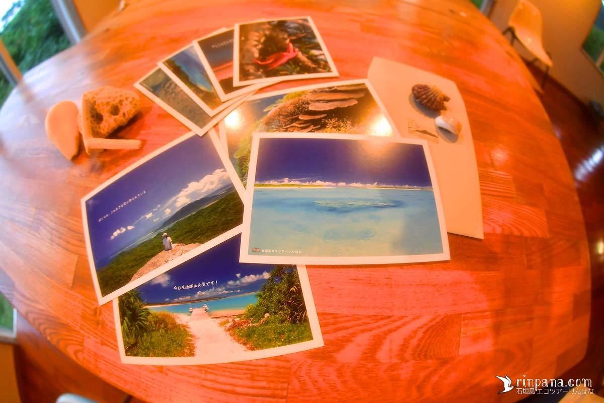 今年はポストカードの新作を作ります!