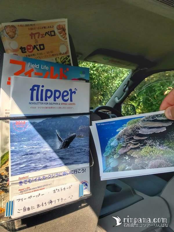 イルカ/クジラやアウトドアにまつわるフリーペーパー配布しています