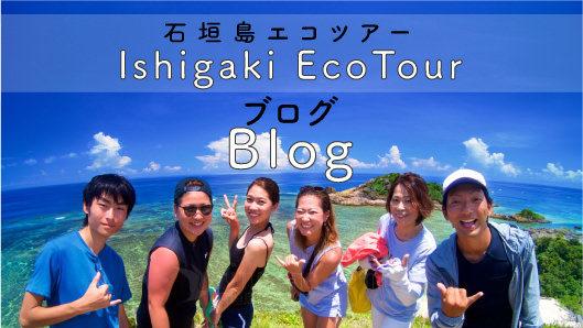 石垣島エコツアーブログ