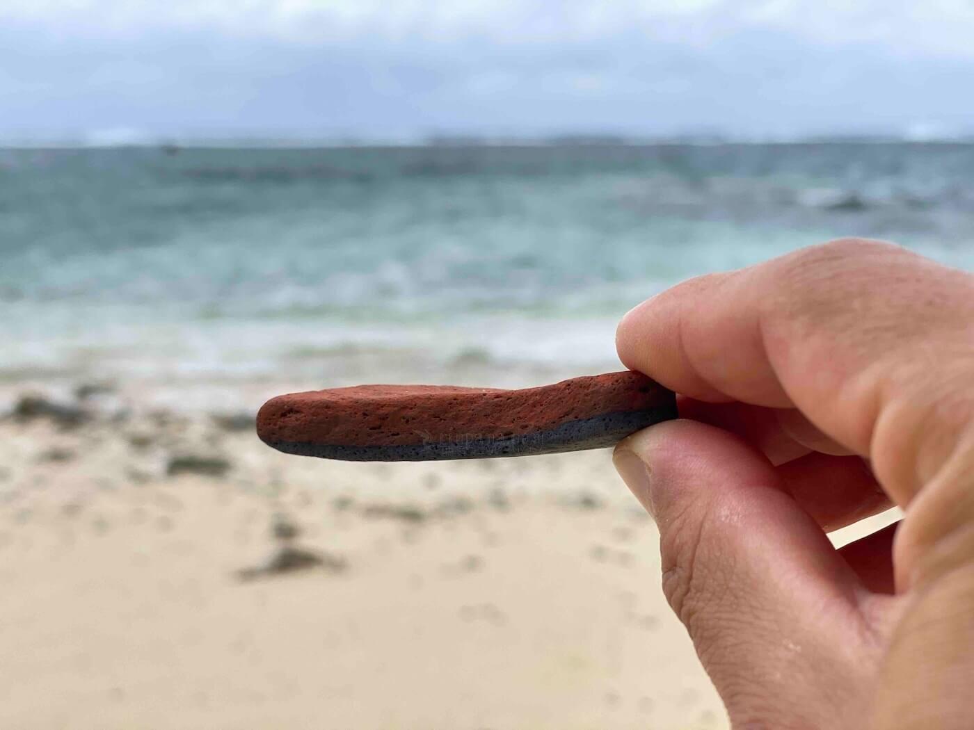 海辺で拾った焼き物の破片