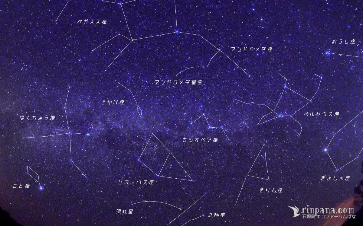 星空ツアーで見られる星座