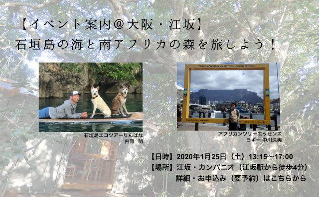 [サンゴ イベント] 大阪で沖縄サンゴ礁のトークイベントを開催