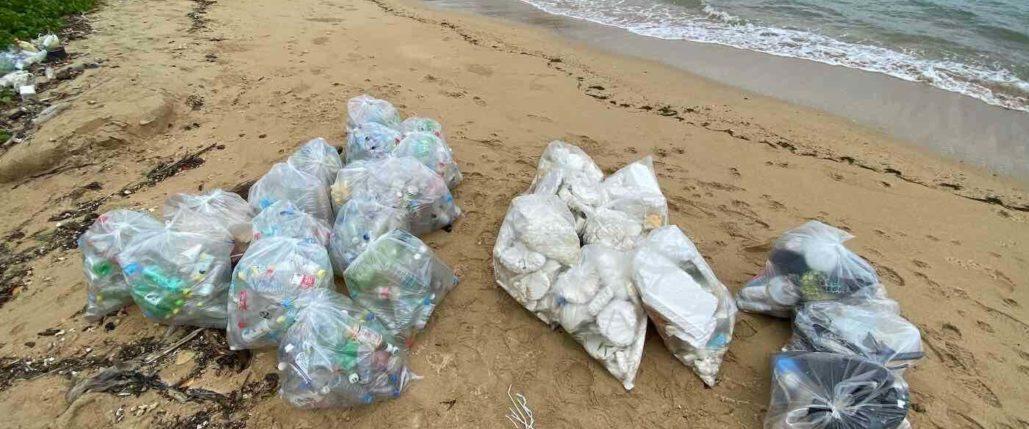 大量の漂着ゴミ