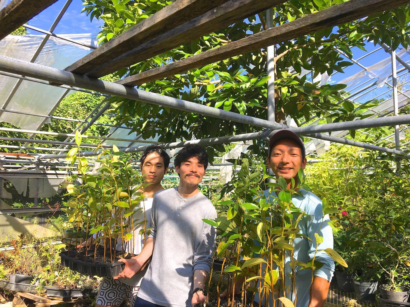 石垣島で植樹