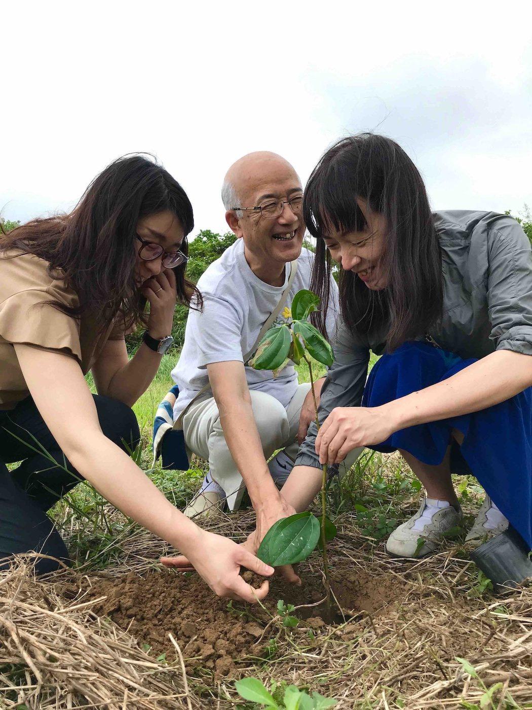 石垣島で木を植える人々