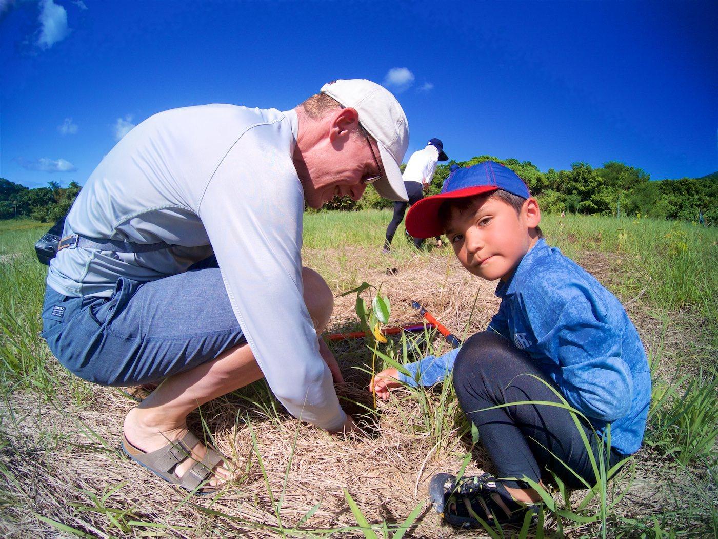 石垣島に観光で木を植えに