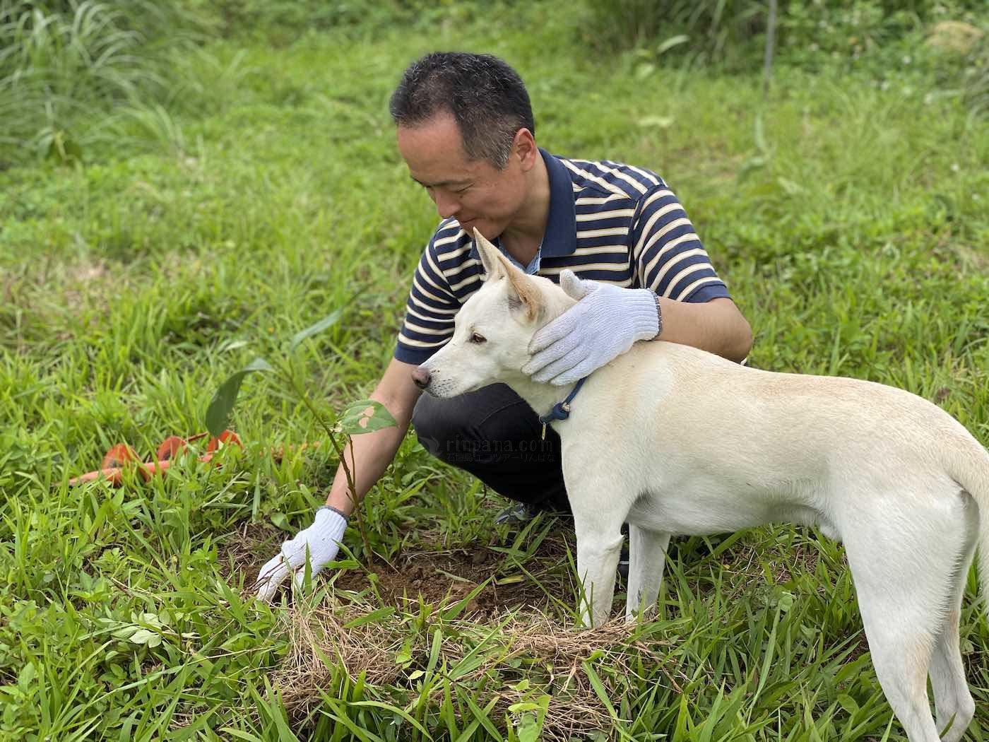 石垣島で植樹体験