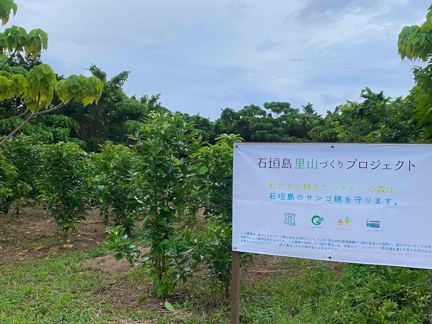 石垣島里山づくりプロジェクト