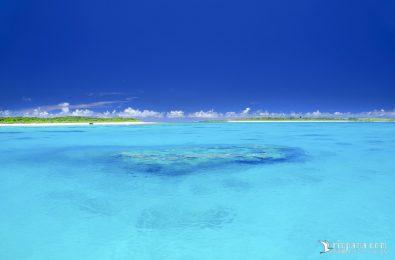 パナリ島の写真