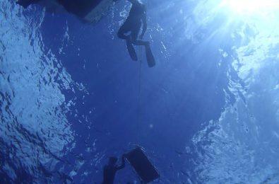 マンタスポットの海底から見上げた様子