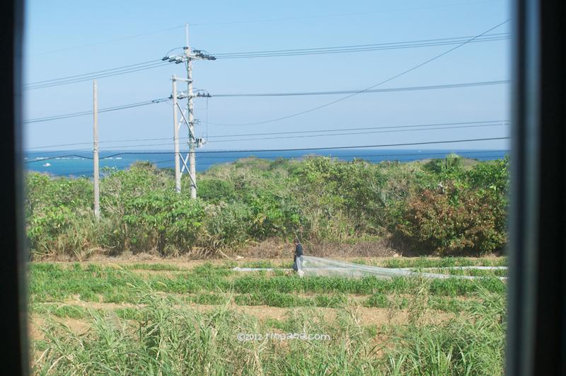 [動画有]  のんびりとした午後。石垣島の米原、りんぱなのお店より
