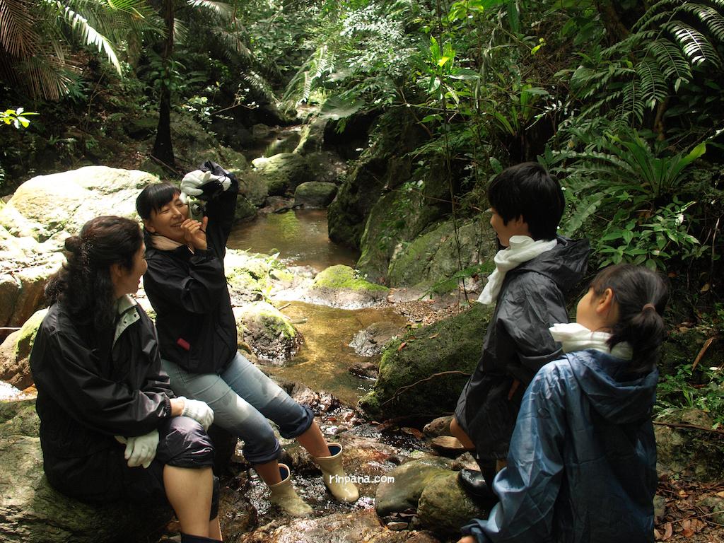 石垣島の森を歩くツアー