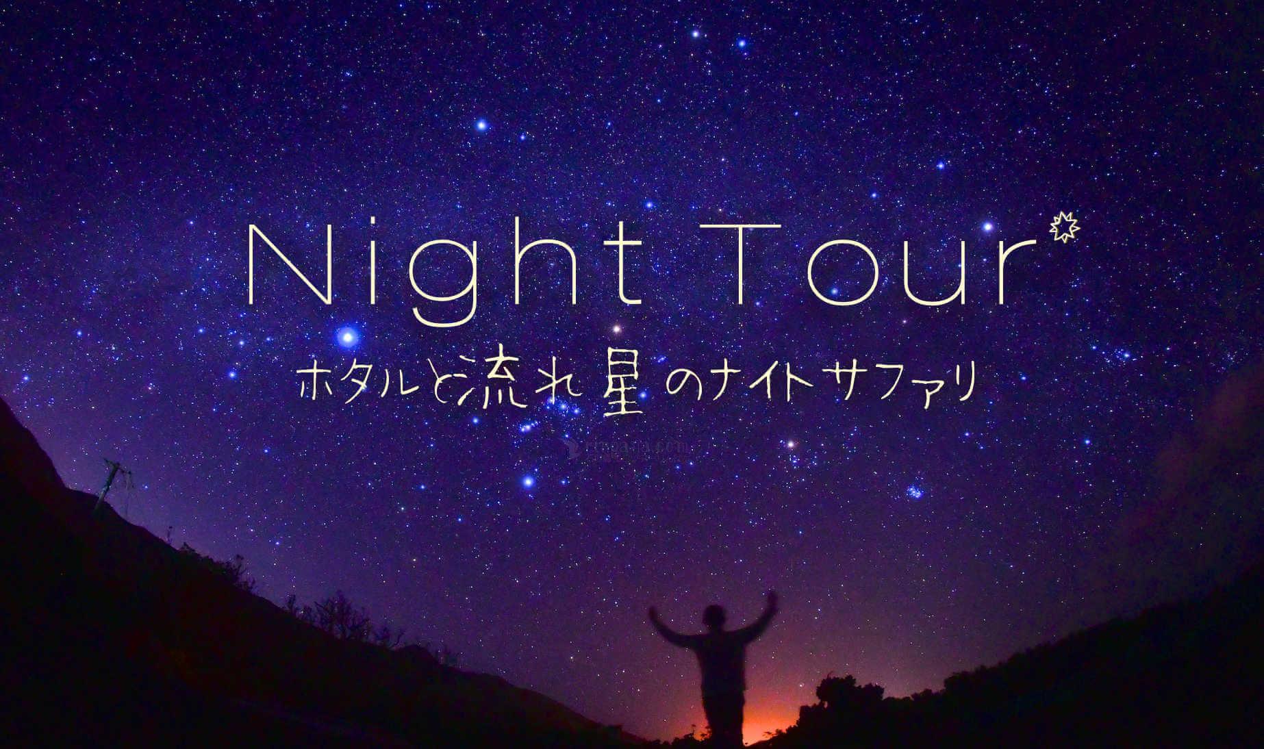 石垣島のナイトツアー[ホタル&星空ナイトサファリ]