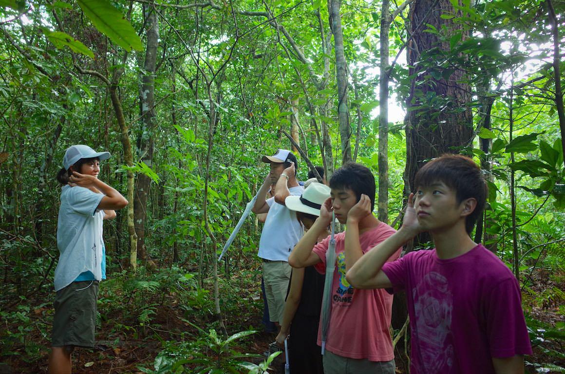 [当日予約OK] 春の石垣島を楽しむ亜熱帯トレッキングツアー