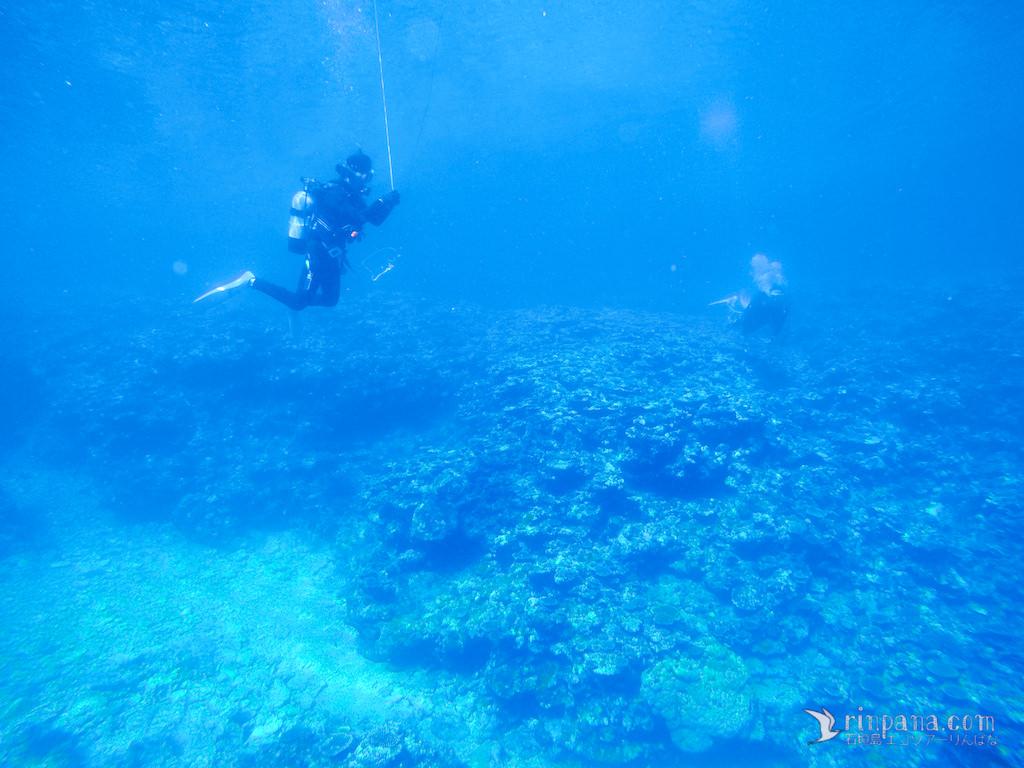 [サンゴ礁を調べる] 海の底に調査器機を設置しました