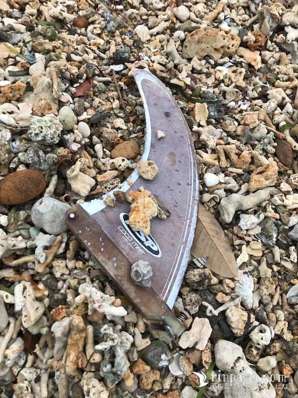 海に落した道具が嵐で帰ってきた。海流ゴミとビーチコーミングの日々。