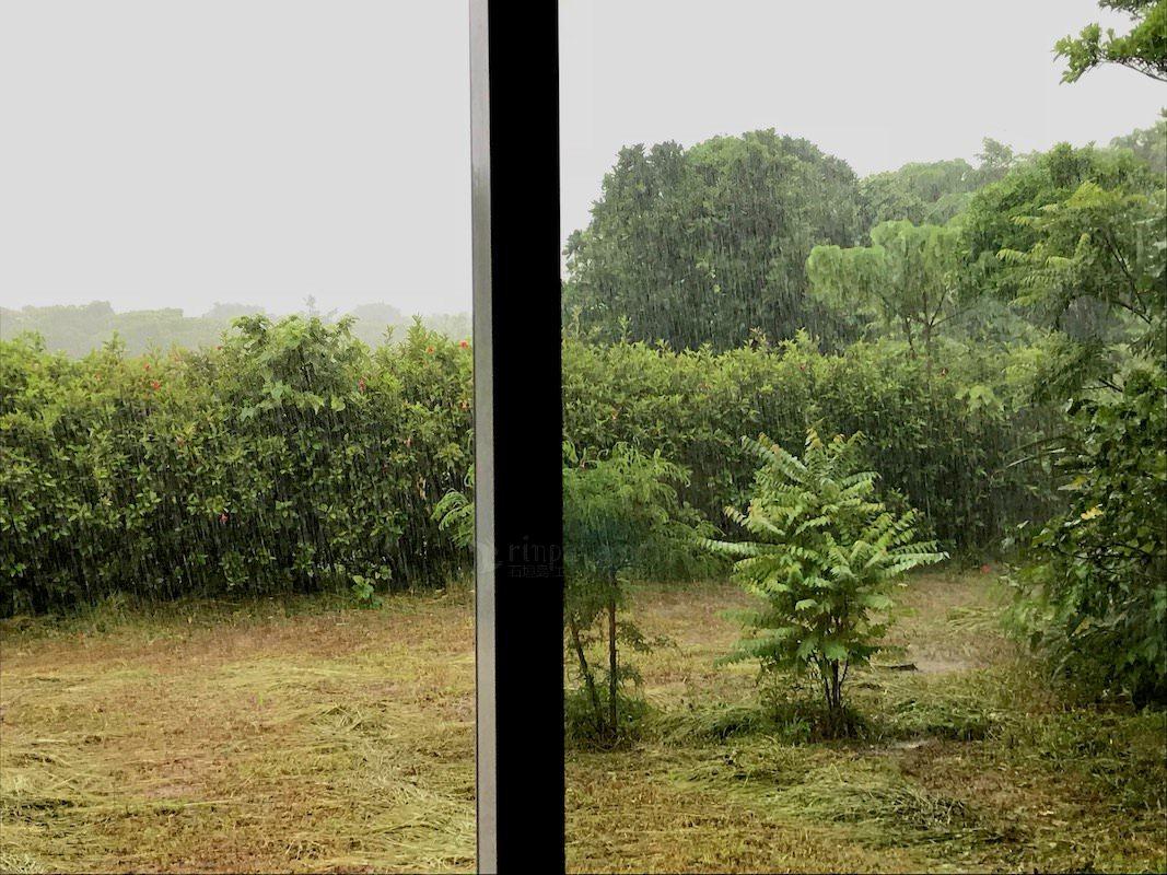 梅雨空けした島は大雨続き? [動画有]