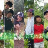 石垣島で木を植えている人たち