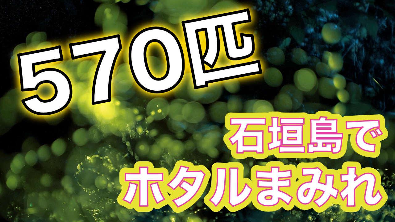 石垣島でホタルまみれになるYouTube動画
